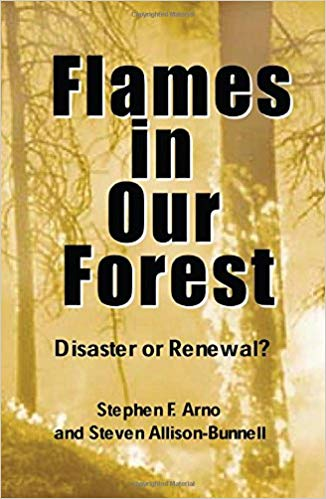 Flames in our Forrest book cover by Stephen Arno