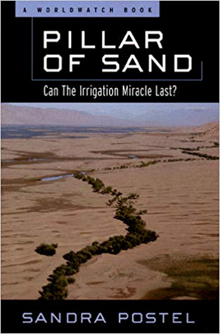 Pillar of Sand book cover by Sandra Postel