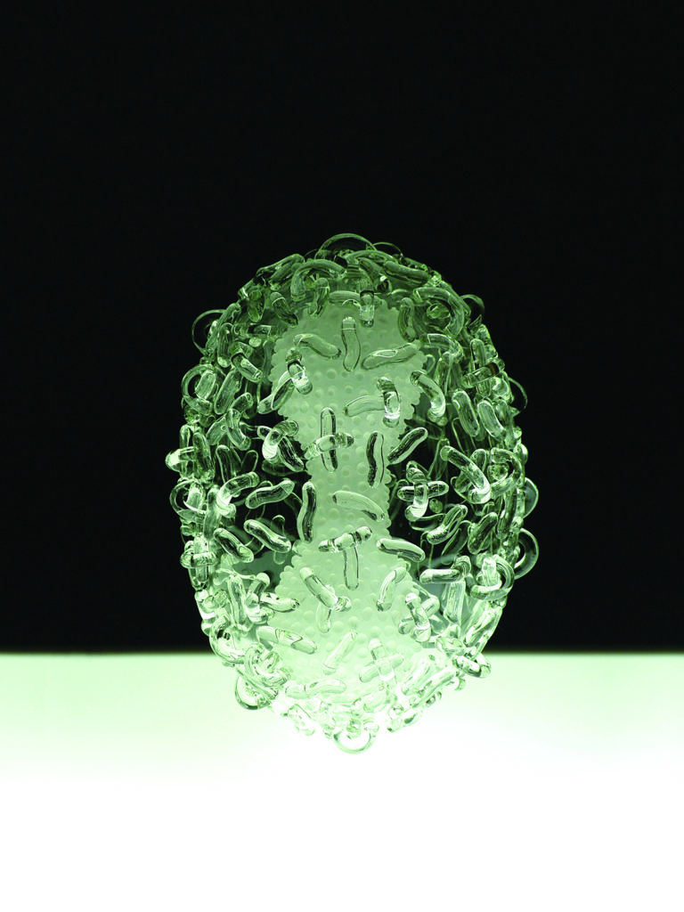 A microscopic image of smallpox