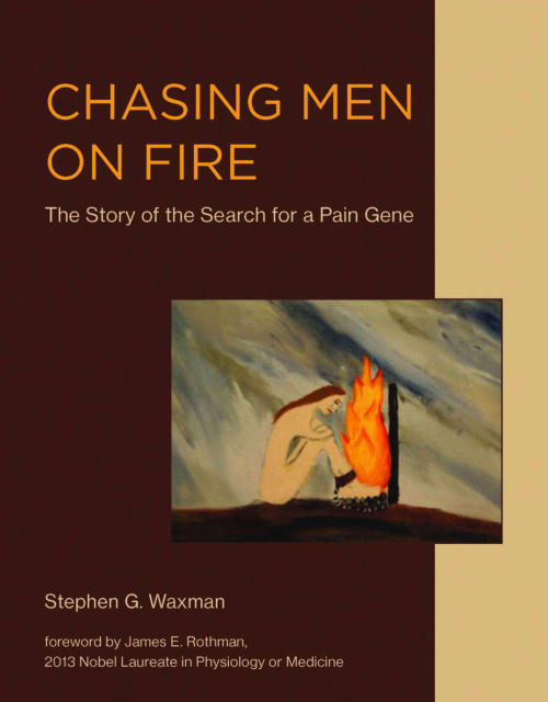 Stephen G. Waxman, Chasing Men on Fire (2018)