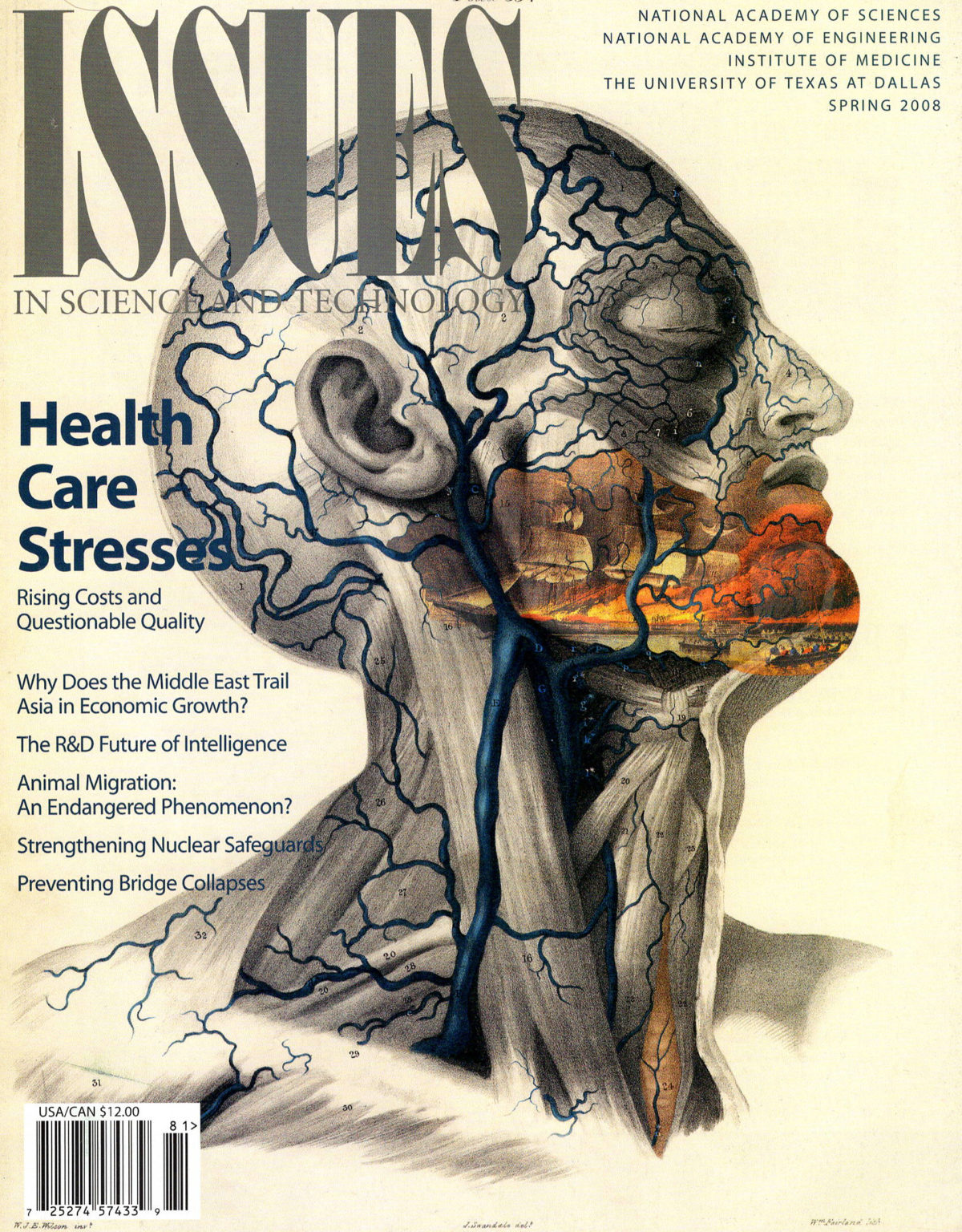 Issues Spring 2008 Health Care Stresses with scientific image of veins in a face