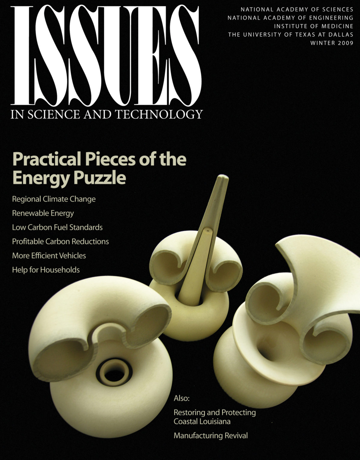 Issues Winter 2009 practical pieces of the energy puzzle cover