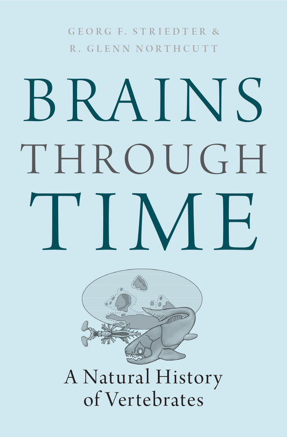 BRAINS THROUGH TIME by Georg Striedter and R. Glenn Northcutt