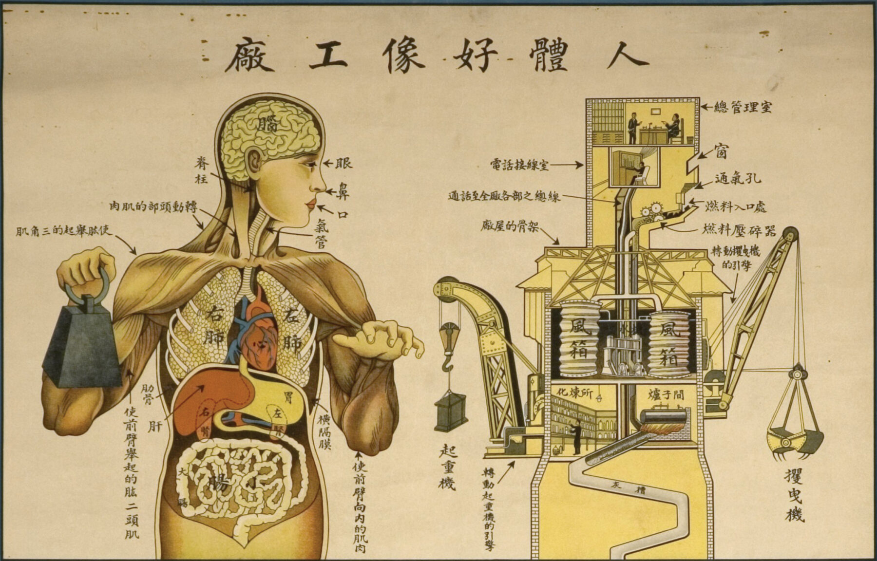 The Human Body is Like a Factory, panel, children's health poster. Physiology and Hygiene Organization, Shanghai, 1933. Artist uncredited. National Library  of Medicine.