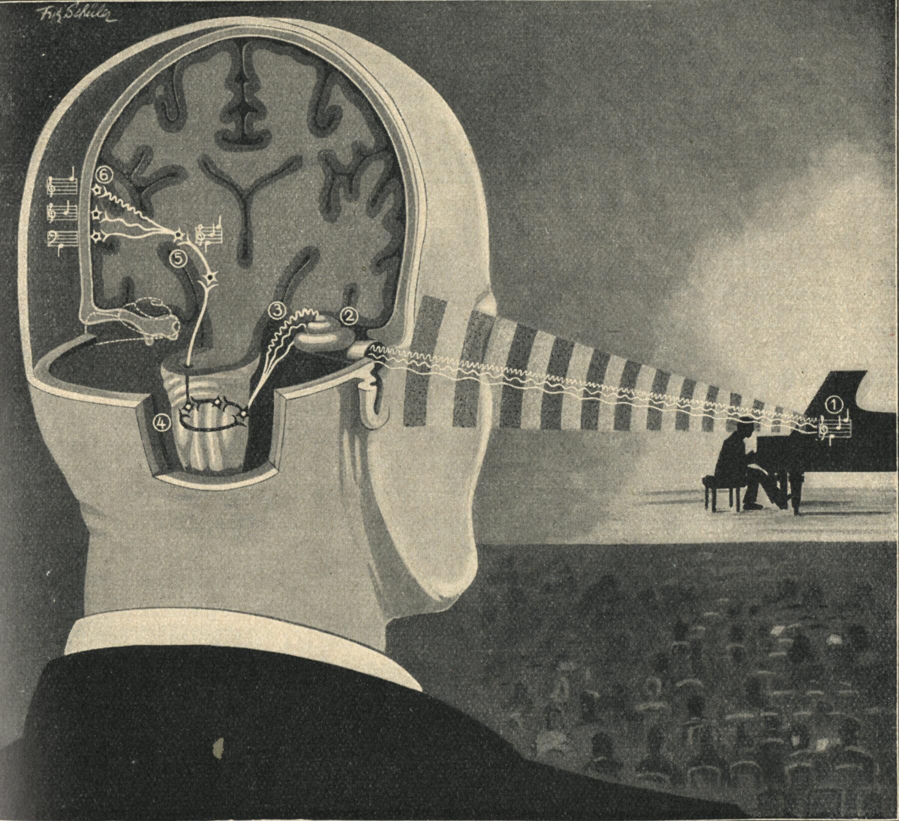 Sound perception, Kahn, Das Leben des Menschen 4 (1929), 197. Art: Fritz Schüler. National Library of Medicine.